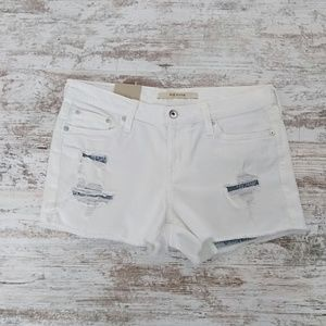 Big Star Distressed Shorts NWT